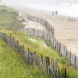 Betty Denise - Beach Fences in a Storm