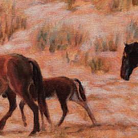 Bonnie Mason - Beach Ponies - Wild horses in the dunes