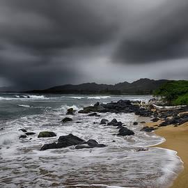 Steven Michael - Beach Storm