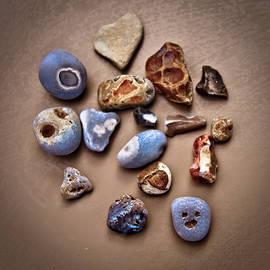 Loriental Photography - Beach Treasures