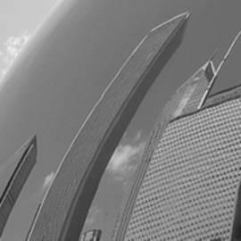 Richard Andrews - Bean Distortions Panorama B n W