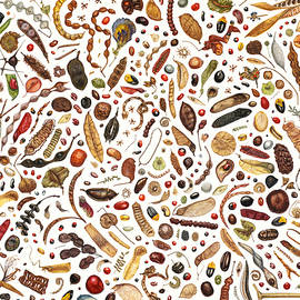Bean Painting - Rachel Pedder-Smith