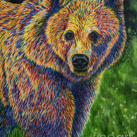 Bear - Veikko Suikkanen