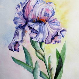 April McCarthy-Braca - Bearded Iris