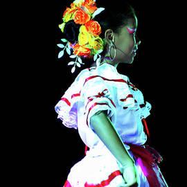 Al Bourassa - Beautiful Andalucian Dancer