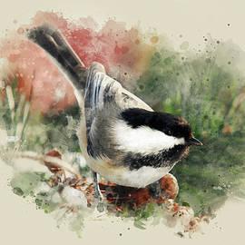 Christina Rollo - Beautiful Chickadee - Watercolor Art