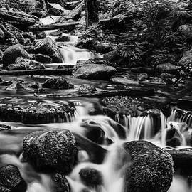 Vishwanath Bhat - Beautiful creek in Columbia River Gorge in black and white