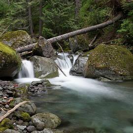 Jeff Swan - Beautiful Nickle Creek