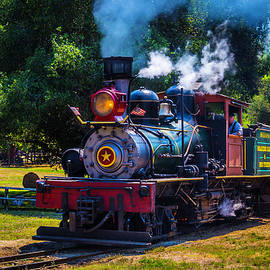 Beautiful Old Steam Train - Garry Gay