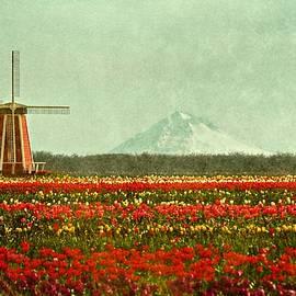 CJ Anderson - Beautiful Oregon