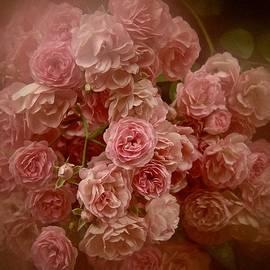 Richard Cummings - Beautiful Roses 2016 No. 3