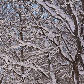 Richard Andrews - Beautiful Snow