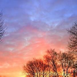 Yumi Johnson - Beautiful sunrise after Blizzard
