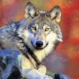 Georgiana Romanovna - Beautiful Wolf Art