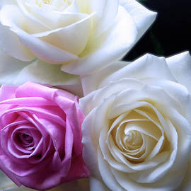 Johanna Hurmerinta - Beauty Bouquet