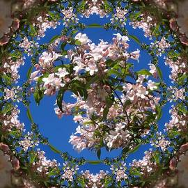 Nancy Pauling - Beauty in a Circle