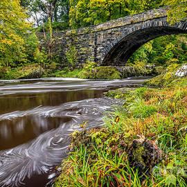 Beaver Bridge - Adrian Evans