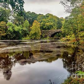 Adrian Evans - Beaver Bridge Autumn
