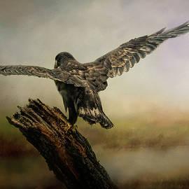 Jai Johnson - Becoming the Boss Bald Eagle Art By Jai Johnson