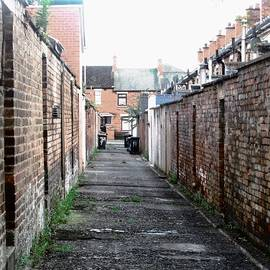 Stephanie Moore - Belfast Alley