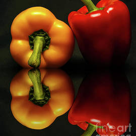 Kathy Franklin - Bell Peppers