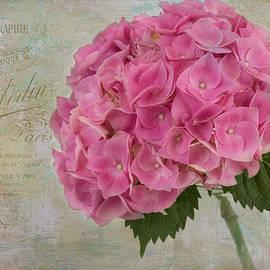 Kim Hojnacki - Belle Fleur
