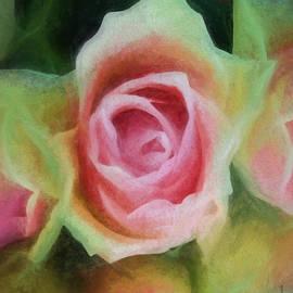 Joe Arsenian - Belle Rose