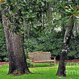 Lydia Holly - Bench at Airlie Gardens