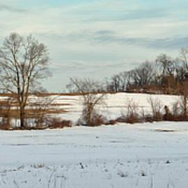 Geoffrey Coelho - Berkshire Meadow - Winter Panoramic