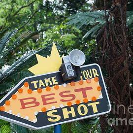 Pamela Williams - Best Shot
