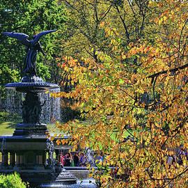 Allen Beatty - Bethesda Fountain Central Park