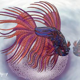 Aimee N Youngs - Betta Fish