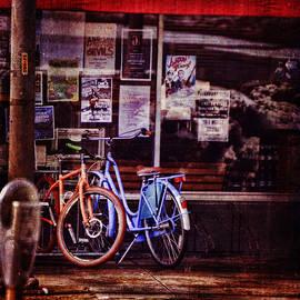 Lesa Fine - Bicycle Love