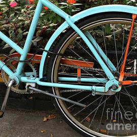 Miriam Danar - Bicyclette Bleu - The Blue Bicycle