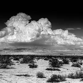 Alex Snay - Big Desert Sky