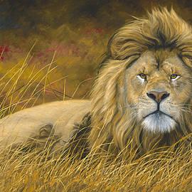 Lucie Bilodeau - Big Lion