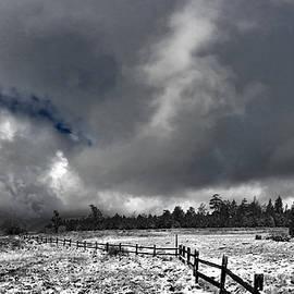 Douglas Craig - Big sky