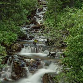 Constance Puttkemery - Big Therriault Creek