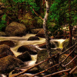 Roger Passman - Big Thompson River in Rocky Mountain National Park