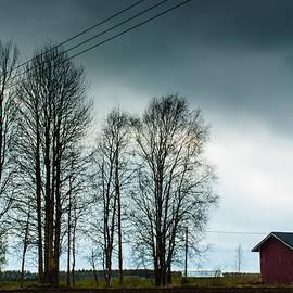 Jukka Heinovirta - Birch Trees And A Storage