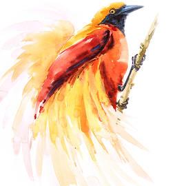 Pornthep Piriyasoranant - Bird of paradise