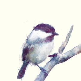 Bird // Trust - Amy Hamilton