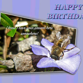 Mother Nature - Birthday Greeting - Dumpster Diving Bee