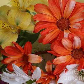 Dora Sofia Caputo Photographic Art and Design - Birthday Wishes - Summer Blossoms
