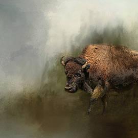 Jai Johnson - Bison After The Mud Bath