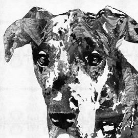 Sharon Cummings - Black And White Great Dane Art Dog By Sharon Cummings