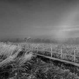 Leif Sohlman - Black and white Misty morning October