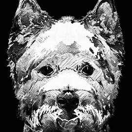 Sharon Cummings - Black And White West Highland Terrier Dog Art Sharon Cummings