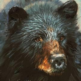 Black Bear - David Stribbling