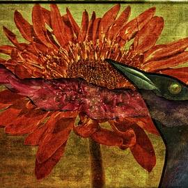 Alice Gipson - Black Bird On Red Dahlia